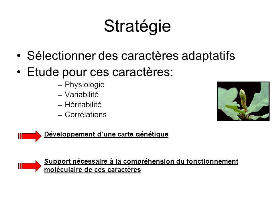 Stratégie Sélectionner des caractères adaptatifs