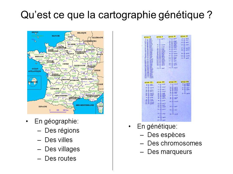 Qu'est ce que la cartographie génétique