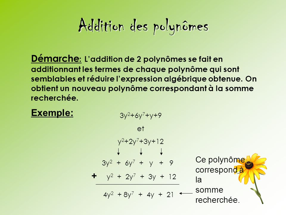 Addition des polynômes