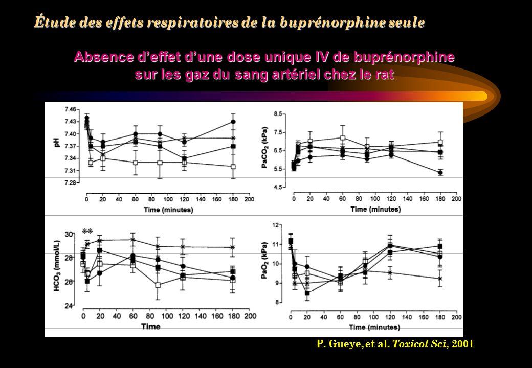 Absence d'effet d'une dose unique IV de buprénorphine