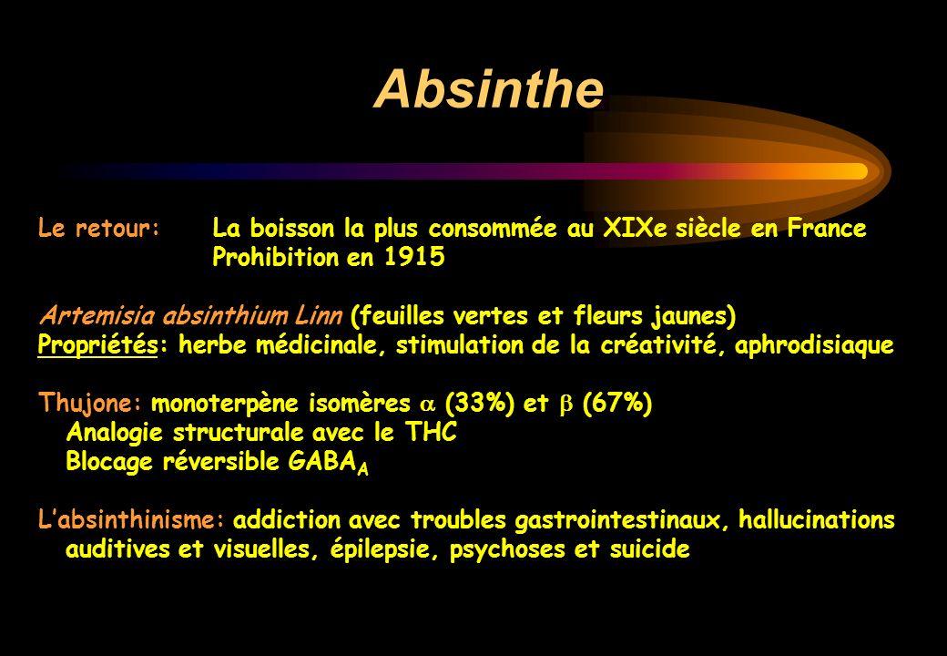Absinthe Le retour: La boisson la plus consommée au XIXe siècle en France. Prohibition en 1915.