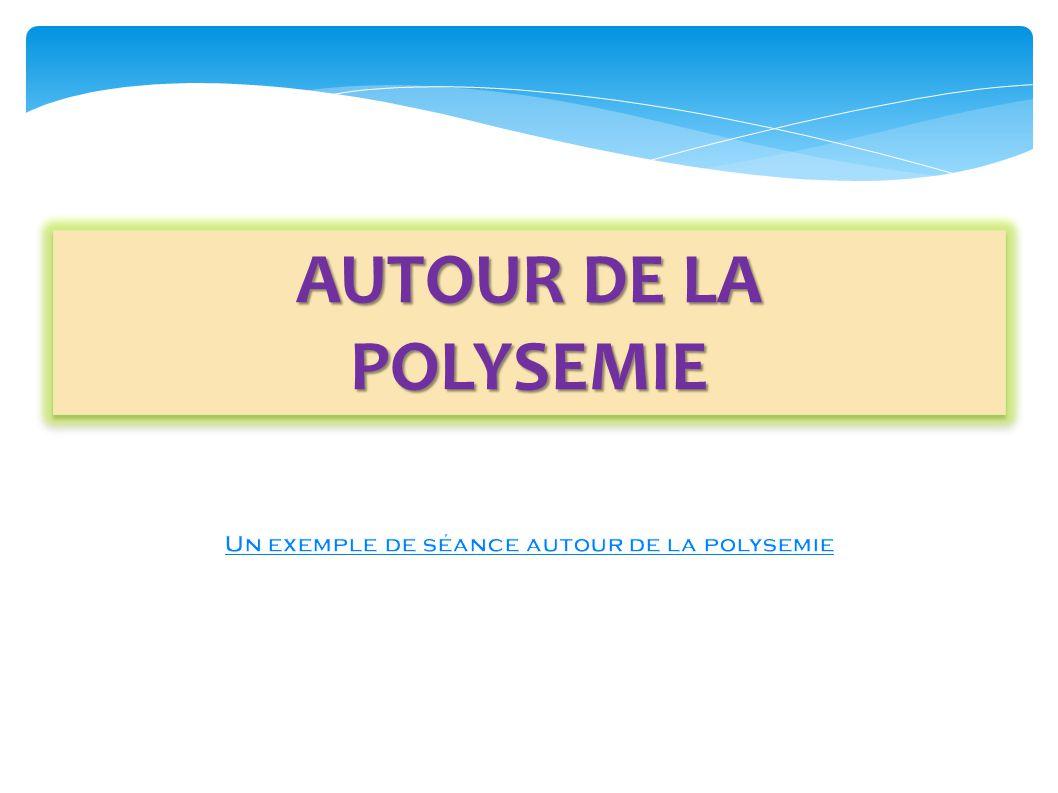 Un exemple de séance autour de la polysemie