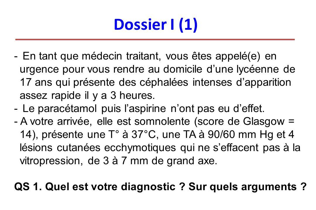 Dossier I (1)