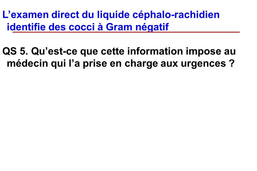 L'examen direct du liquide céphalo-rachidien identifie des cocci à Gram négatif