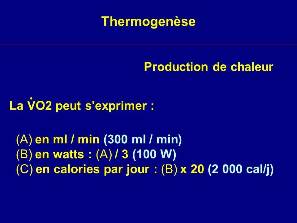 . Thermogenèse Production de chaleur La VO2 peut s exprimer :