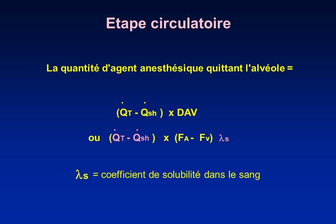 Etape circulatoireLa quantité d agent anesthésique quittant l alvéole = . . (QT - Qsh ) x DAV. . .