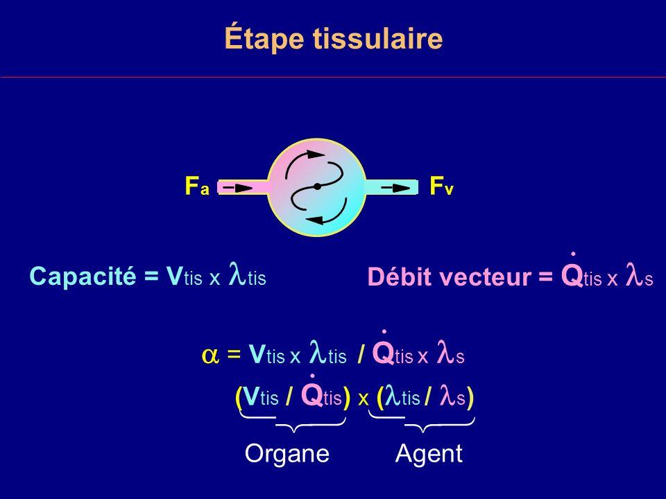       Étape tissulaire  = Vtis x tis / Qtis x s Fa Fv .