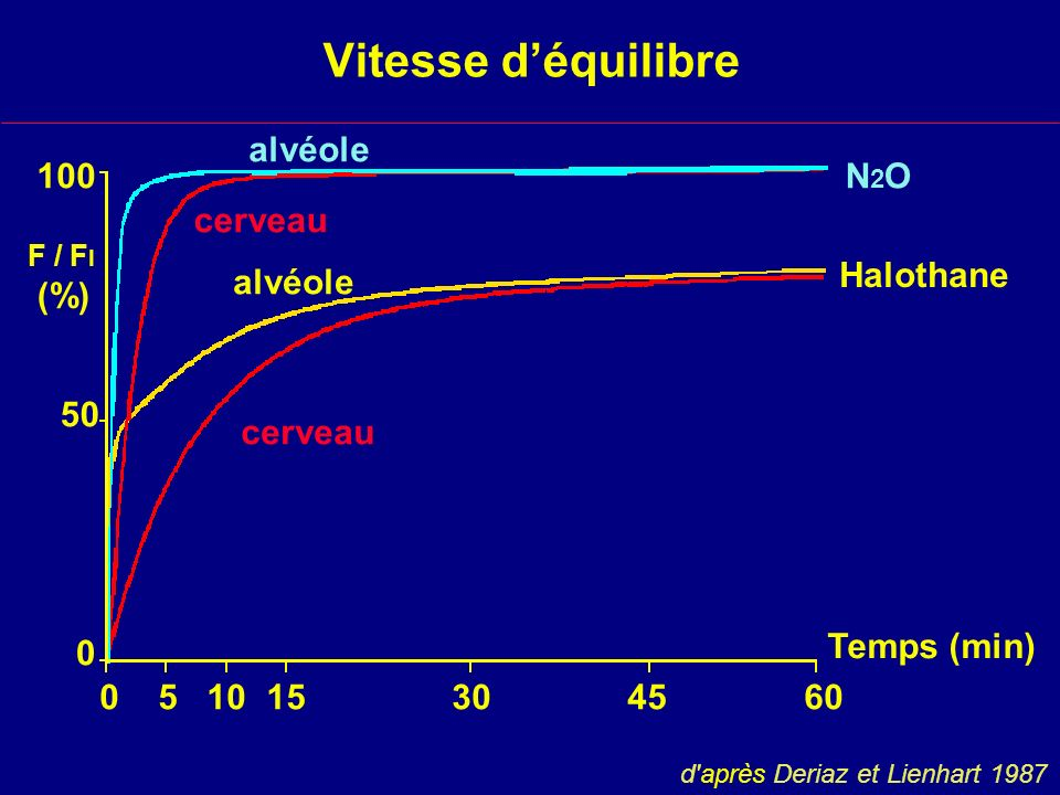 Vitesse d'équilibre alvéole 100 N2O cerveau (%) Halothane alvéole 50