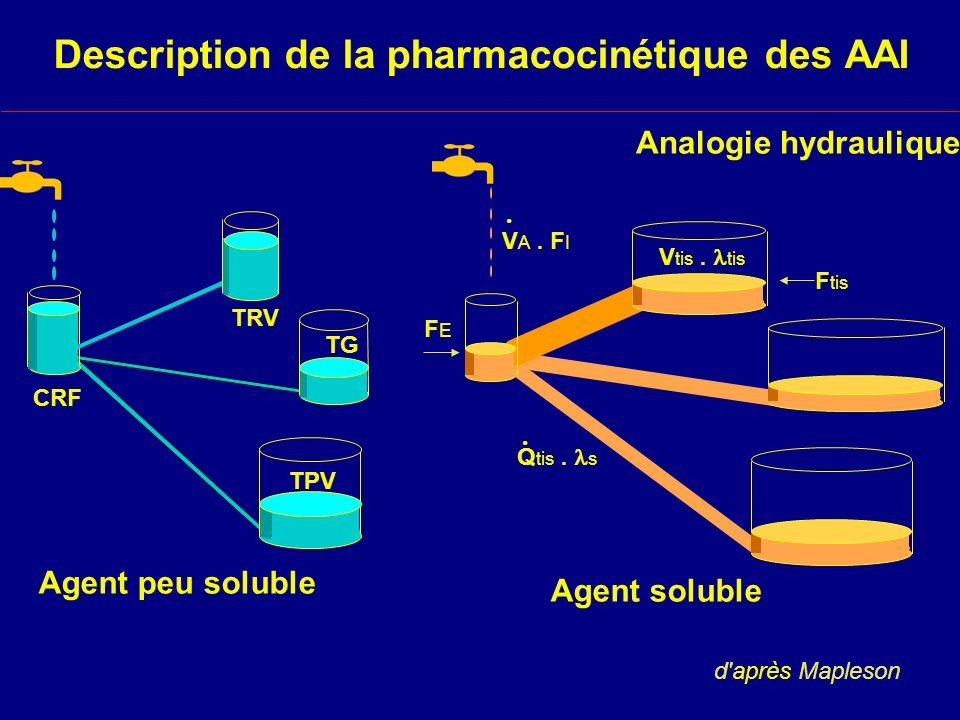 Description de la pharmacocinétique des AAI