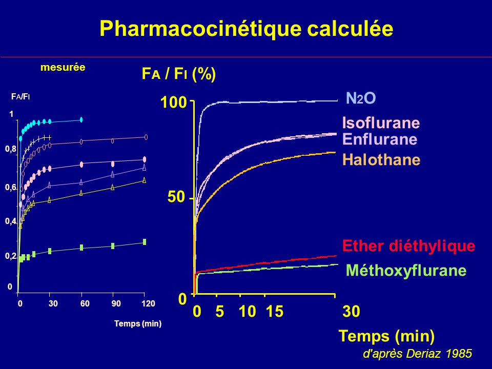 Pharmacocinétique calculée