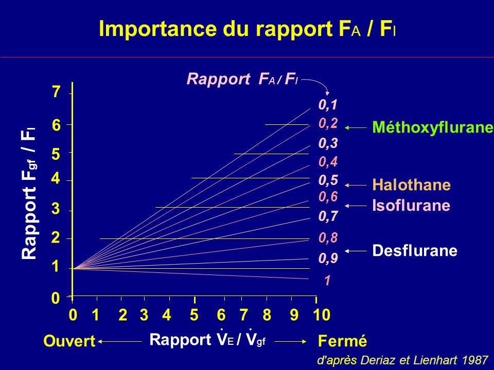 Importance du rapport FA / FI