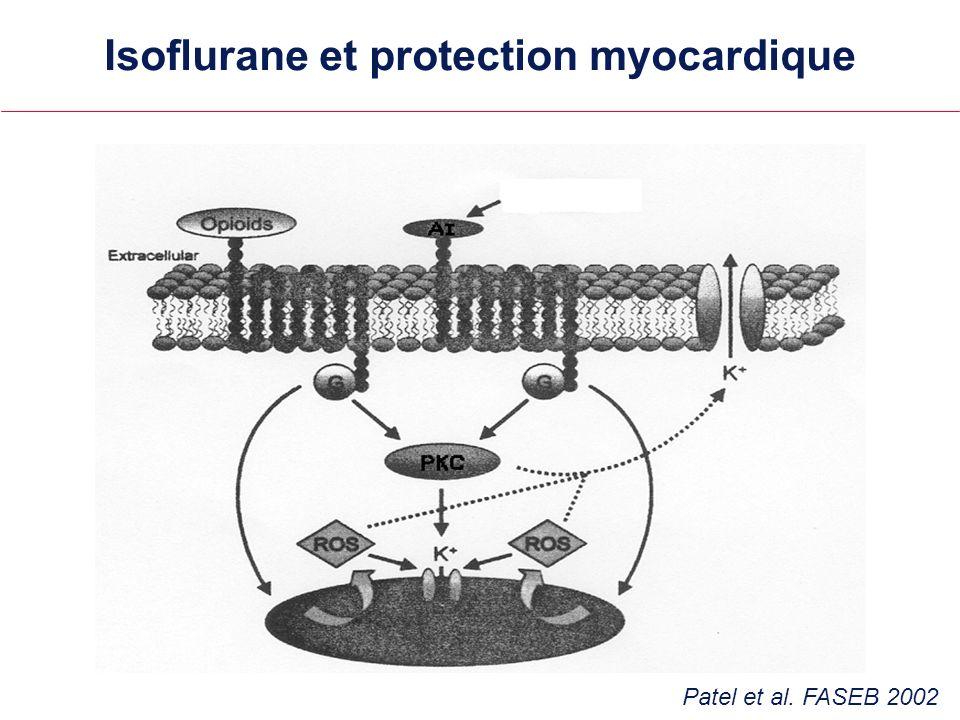 Isoflurane et protection myocardique