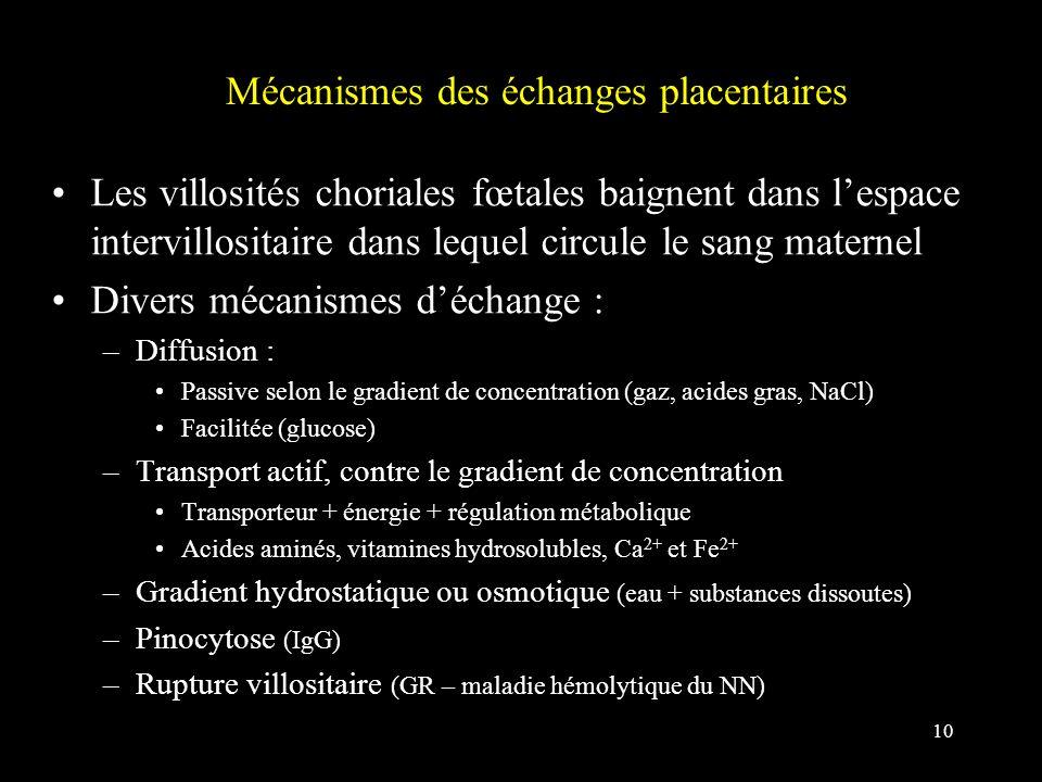 Mécanismes des échanges placentaires