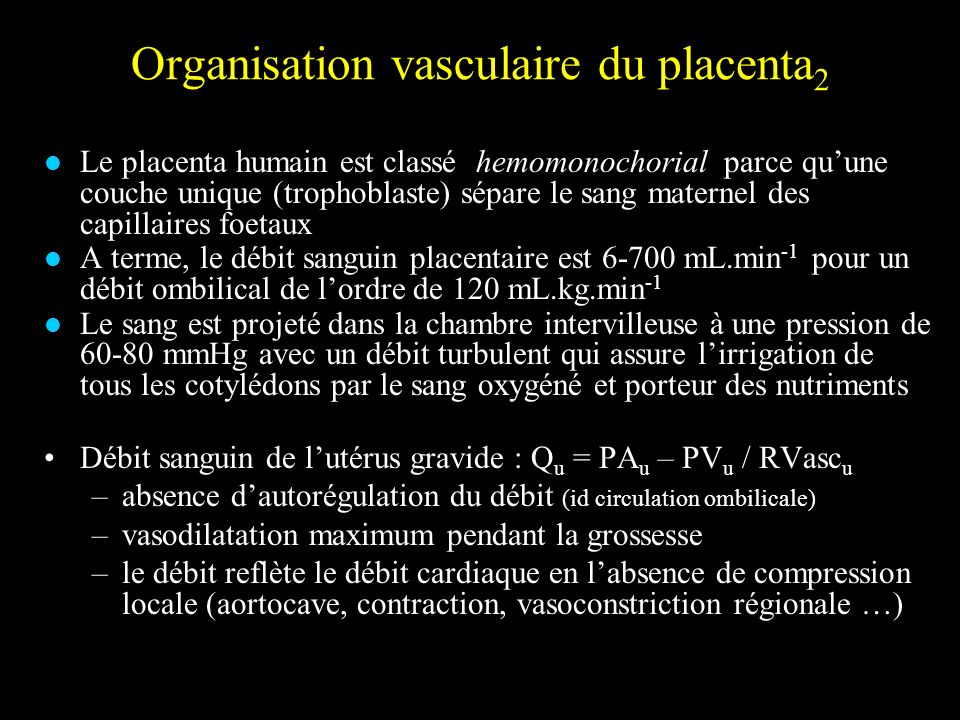 Organisation vasculaire du placenta2