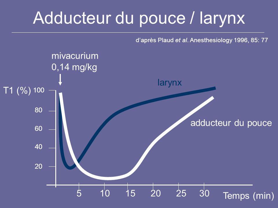Adducteur du pouce / larynx