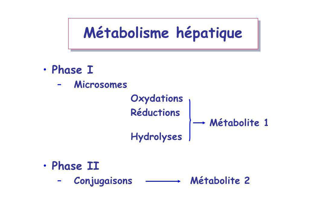 Métabolisme hépatique