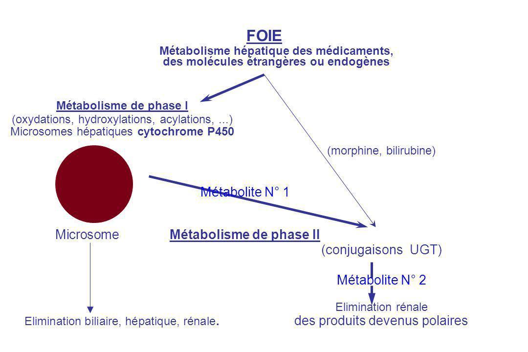 (morphine, bilirubine) Métabolite N° 1