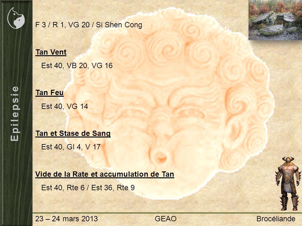 Epilepsie F 3 / R 1, VG 20 / Si Shen Cong Tan Vent