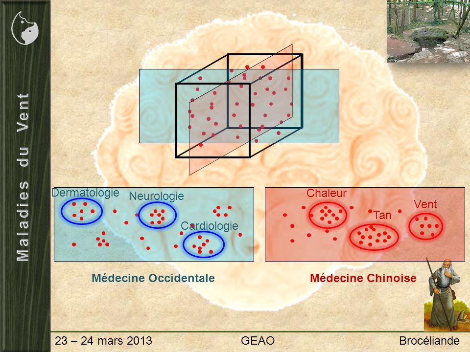 Maladies du Vent Dermatologie Chaleur Neurologie Vent Tan Cardiologie
