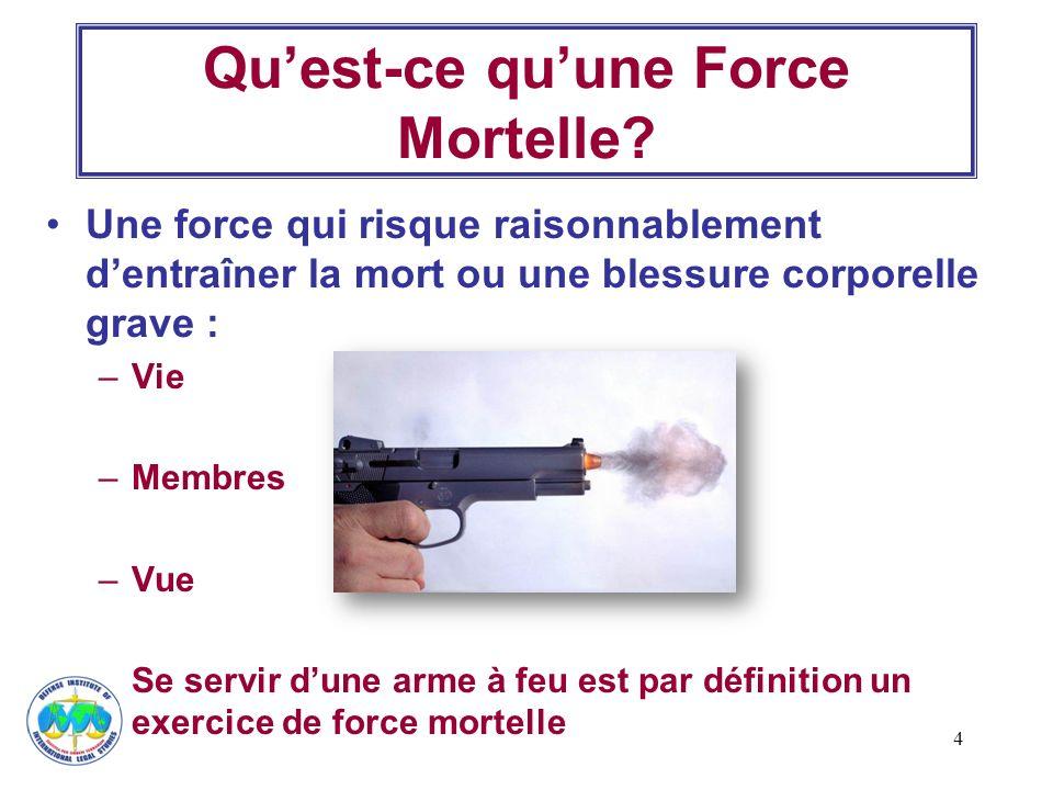 Qu'est-ce qu'une Force Mortelle