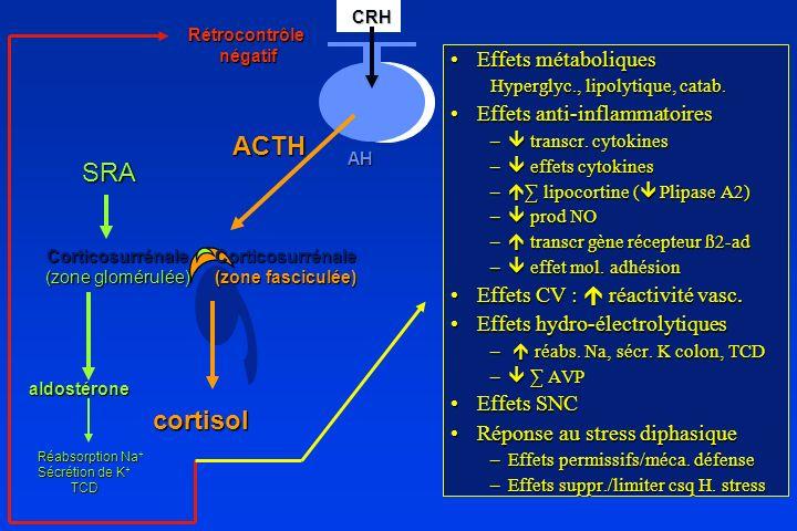 ACTH SRA cortisol Effets métaboliques Effets anti-inflammatoires