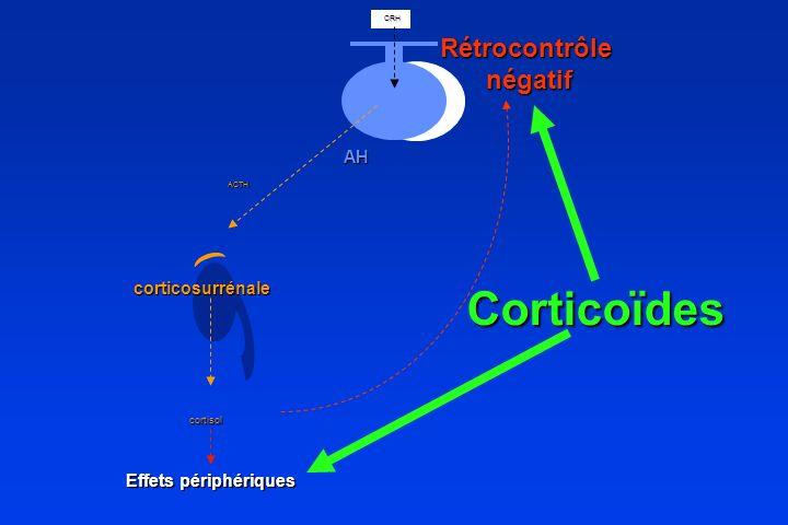 Corticoïdes Rétrocontrôle négatif AH corticosurrénale