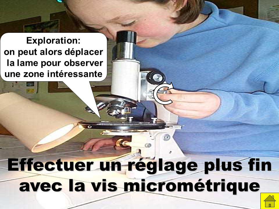Effectuer un réglage plus fin avec la vis micrométrique
