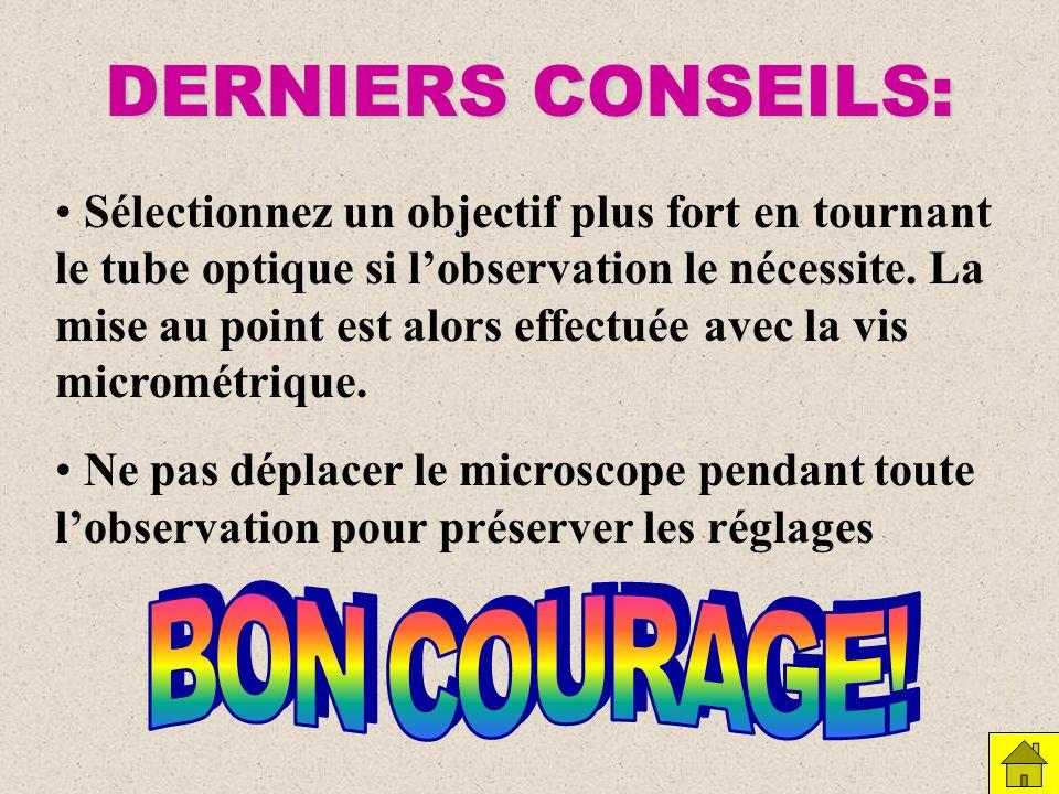 DERNIERS CONSEILS: