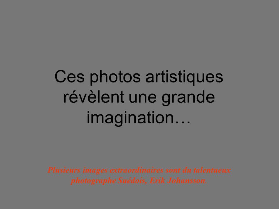 Ces photos artistiques révèlent une grande imagination…
