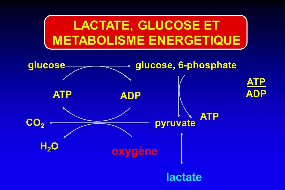 LACTATE, GLUCOSE ET METABOLISME ENERGETIQUE
