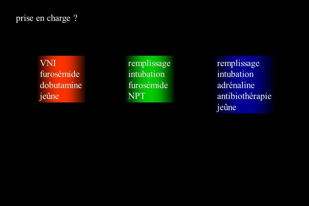prise en charge VNI. furosémide. dobutamine. jeûne. remplissage. intubation. furosémide. NPT.