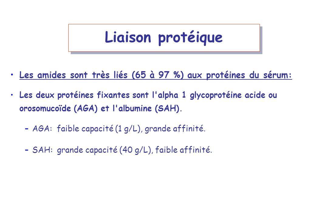 Liaison protéique Les amides sont très liés (65 à 97 %) aux protéines du sérum:
