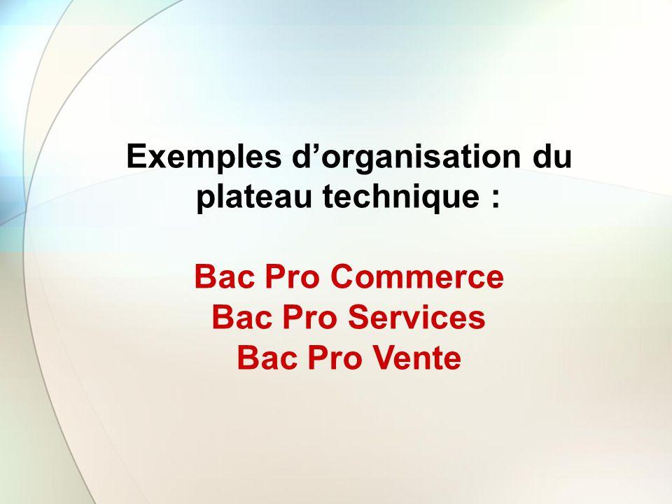 Exemples d'organisation du plateau technique :