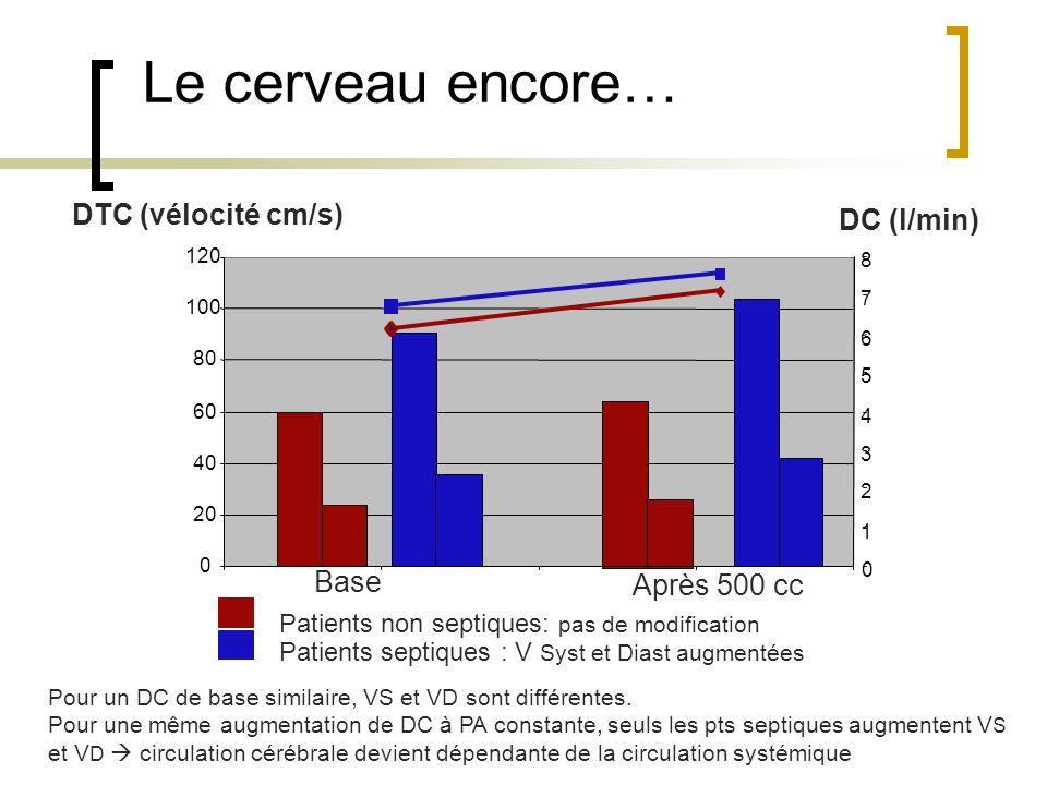 Le cerveau encore… DTC (vélocité cm/s) DC (l/min) Base Après 500 cc