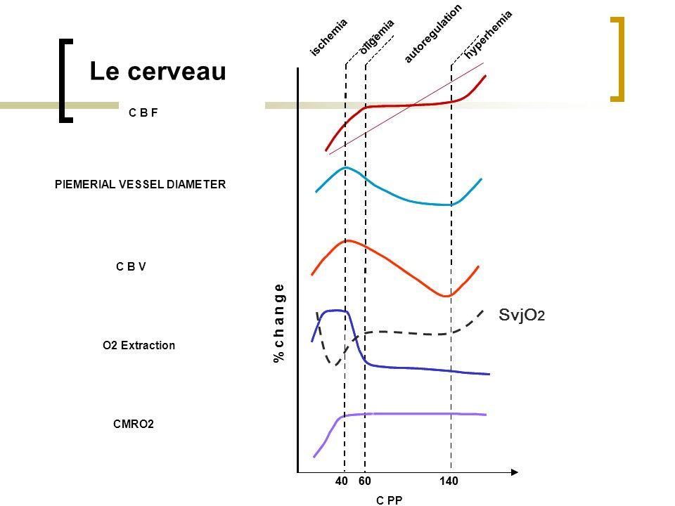 Le cerveau SvjO2 % c h a n g e Débit sanguin cérébral