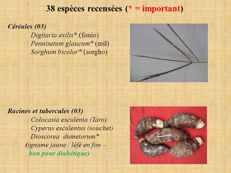 38 espèces recensées (* = important)
