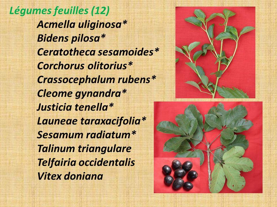 Légumes feuilles (12) Acmella uliginosa* Bidens pilosa* Ceratotheca sesamoides* Corchorus olitorius*