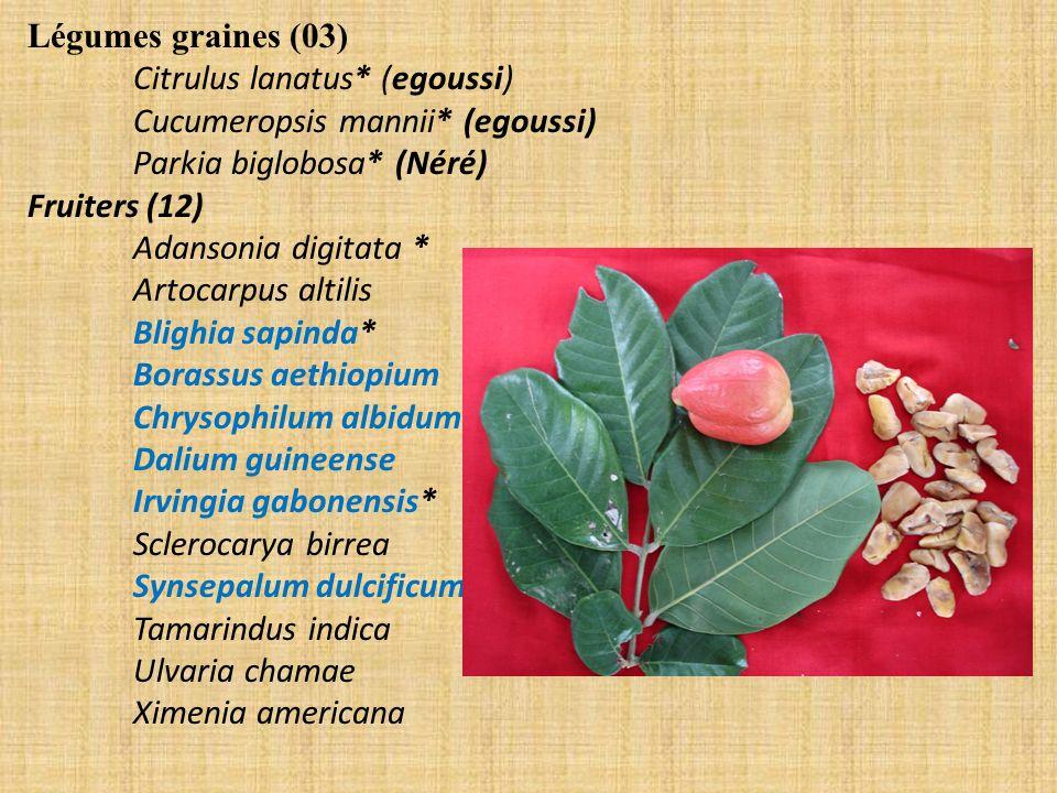 Légumes graines (03) Citrulus lanatus* (egoussi) Cucumeropsis mannii* (egoussi) Parkia biglobosa* (Néré)