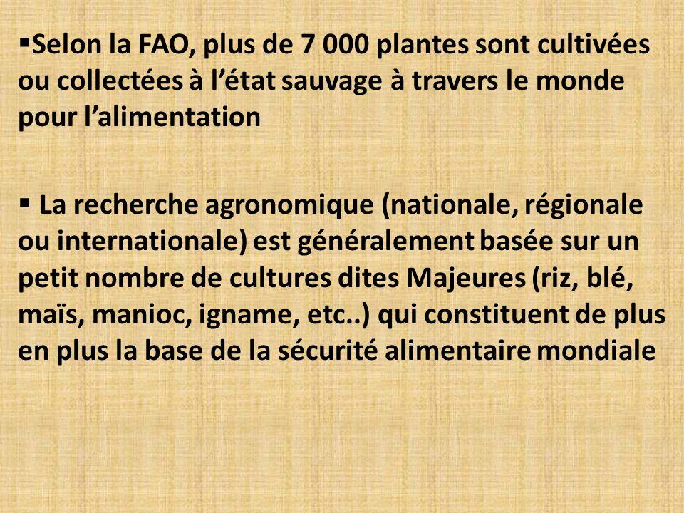 Selon la FAO, plus de 7 000 plantes sont cultivées ou collectées à l'état sauvage à travers le monde pour l'alimentation