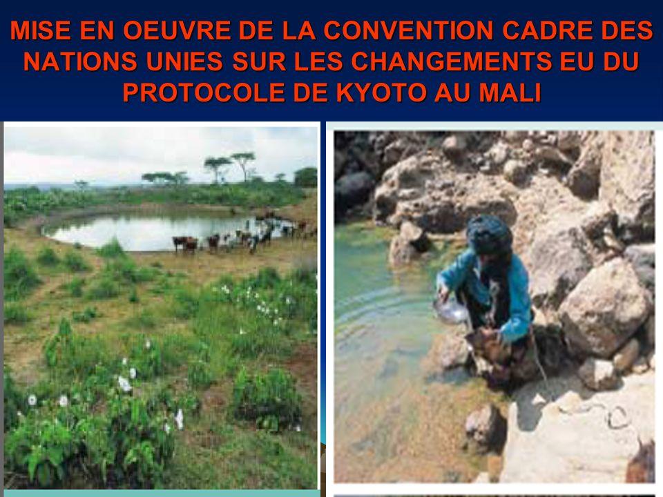 MISE EN OEUVRE DE LA CONVENTION CADRE DES NATIONS UNIES SUR LES CHANGEMENTS EU DU PROTOCOLE DE KYOTO AU MALI