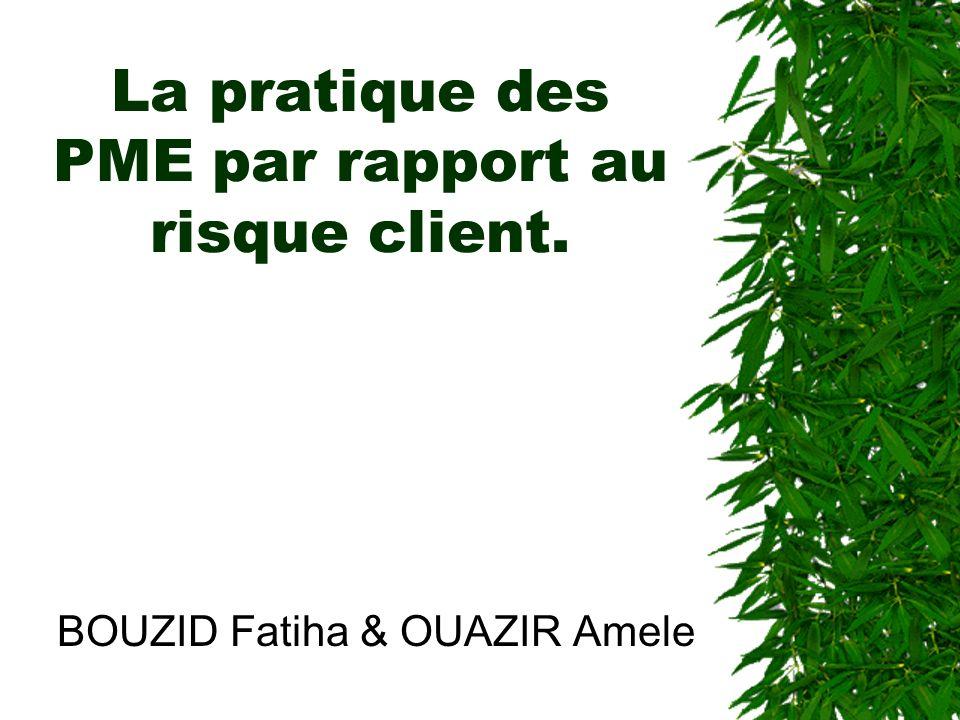 La pratique des PME par rapport au risque client.