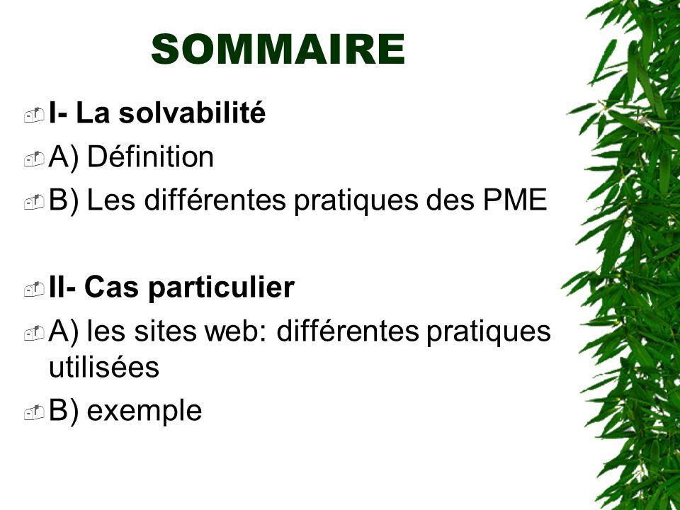 SOMMAIRE I- La solvabilité A) Définition