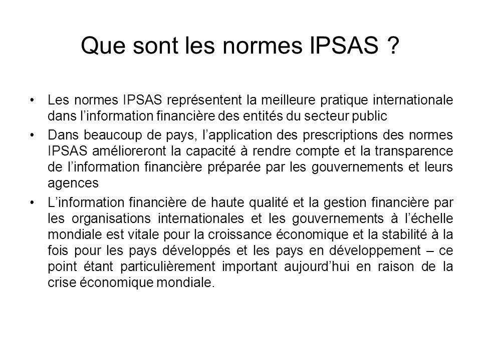 Que sont les normes IPSAS