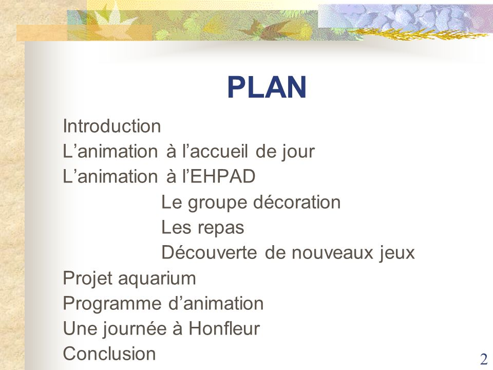 PLAN Introduction L'animation à l'accueil de jour