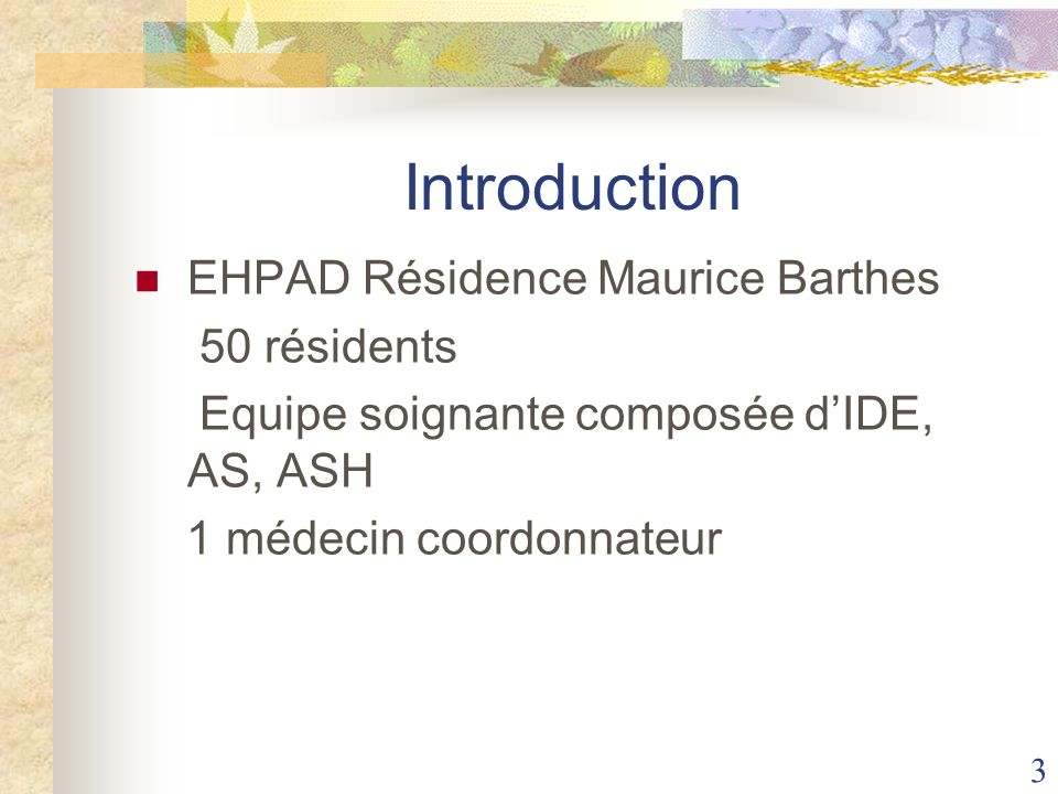 Introduction EHPAD Résidence Maurice Barthes 50 résidents