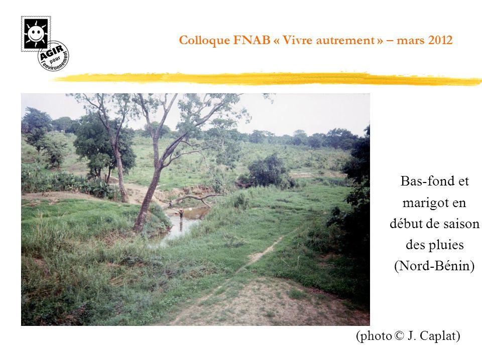 Bas-fond et marigot en début de saison des pluies (Nord-Bénin)