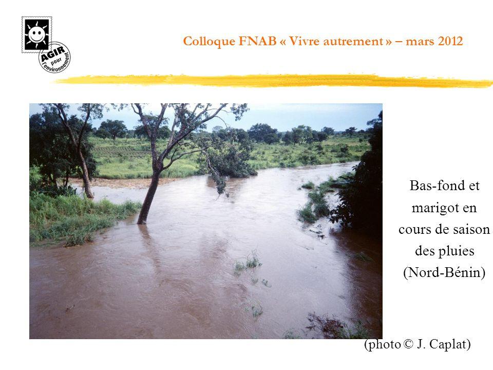 Bas-fond et marigot en cours de saison des pluies (Nord-Bénin)