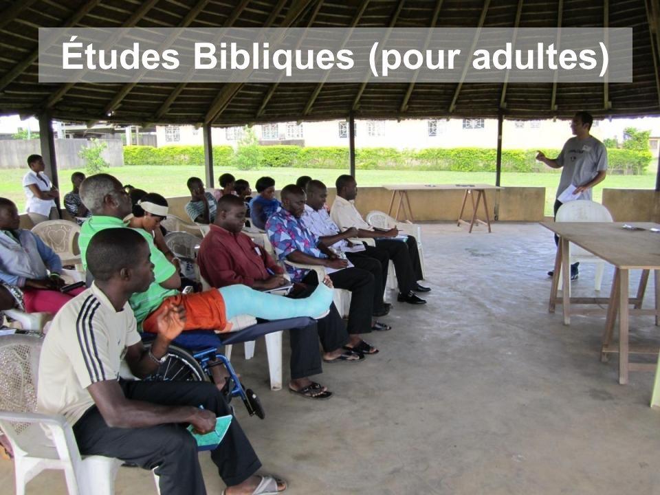 Études Bibliques (pour adultes)