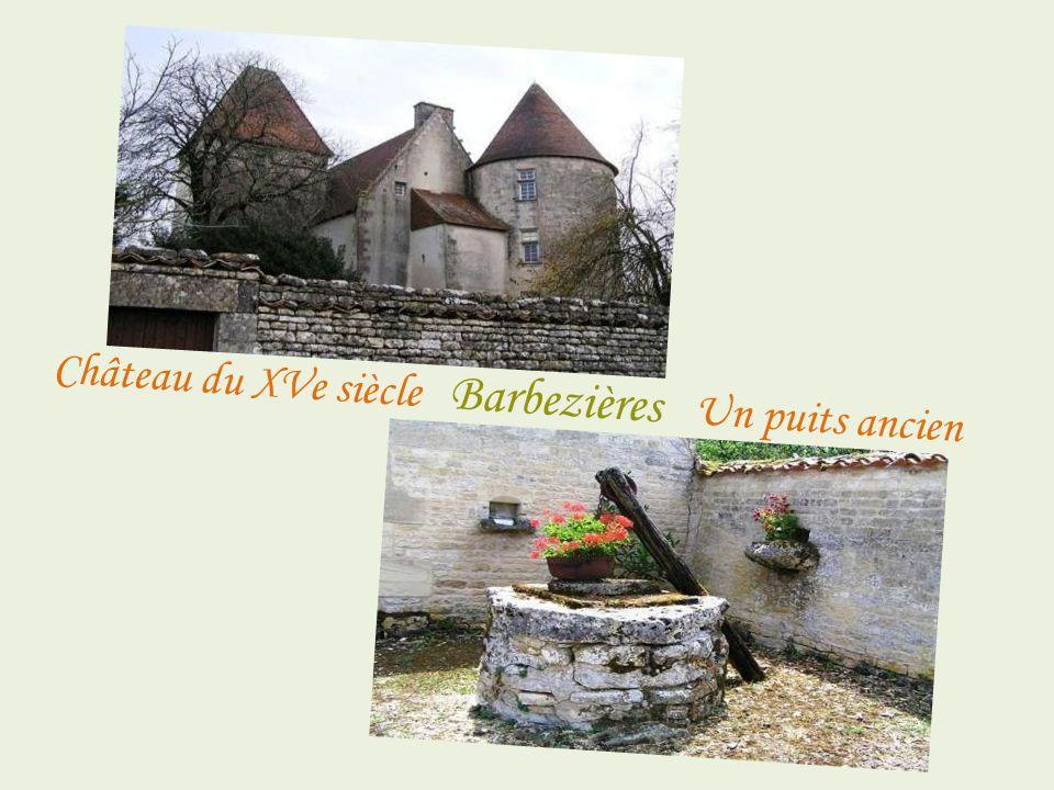 Château du XVe siècle Barbezières Un puits ancien