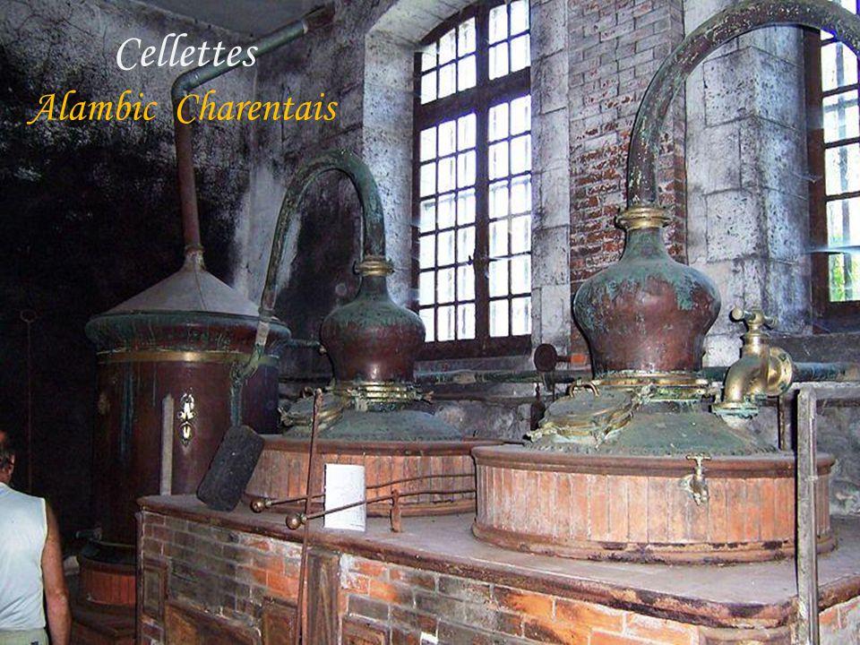 .. Cellettes Alambic Charentais